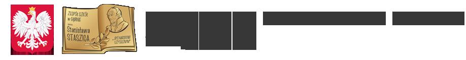 Zespół Szkół im. St. Staszica w Gąbinie Logo